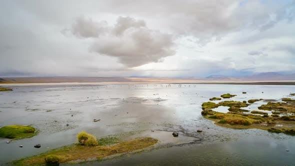 Panoramic View On Famous Laguna Colorada in Bolivia