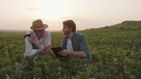 Farmers Sit and Talk About Their Crops