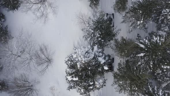 Thumbnail for Snowy Forest Following Atv Vehicles