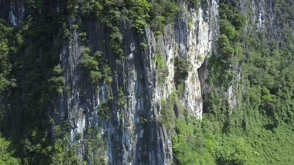 Thumbnail for Motion Along Grey White Stony Cliff with Plants Nearby