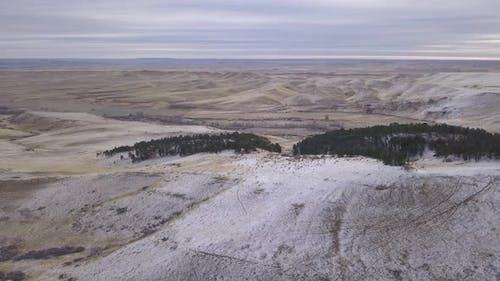 Aerial of Elk Herd Many Standing Winter in Prairie Foothills in Wyoming