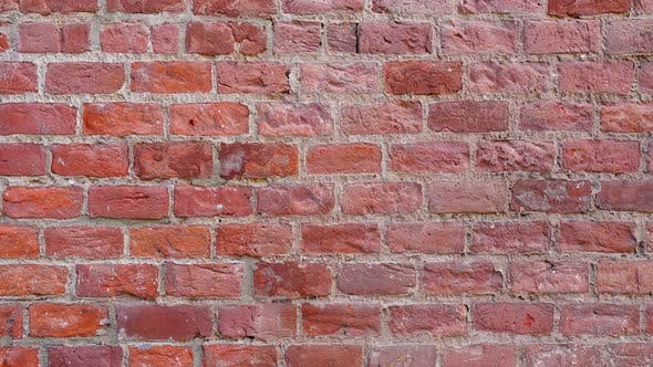 Cover Image for The Wall is Brick