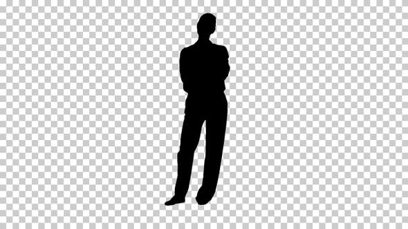 Thumbnail for Silhouette Businesswoman Standing, Alpha Channel