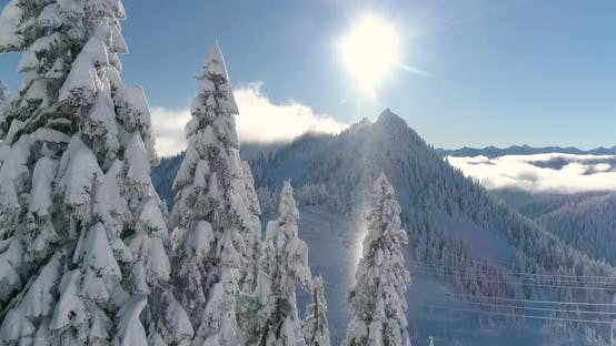 Thumbnail for Unreal Lighting Sunbeam Through Snowing Air Particles Illuminated Tree In Wintertime Mountain