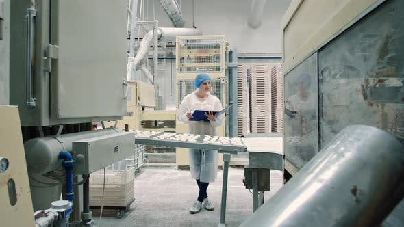 Thumbnail for Candy Factory Controller Checking Conveyor with Candies