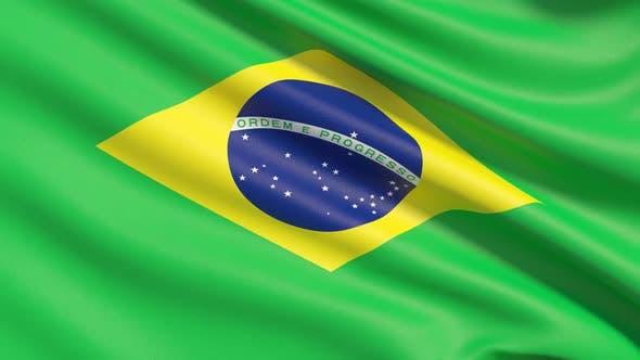 Thumbnail for The Flag of Brazil