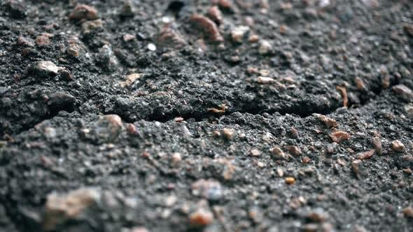 Thumbnail for Macro Crack In The Asphalt 2