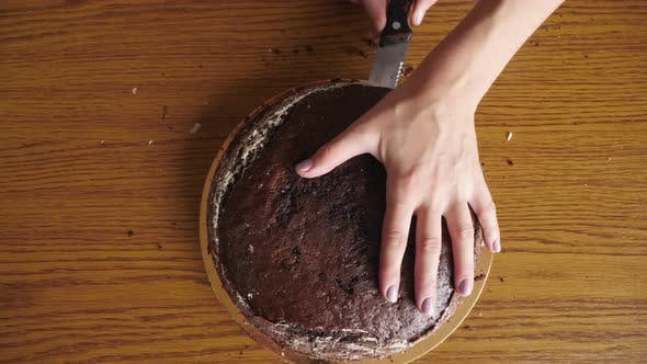 Thumbnail for High angle view of hands cutting a cake