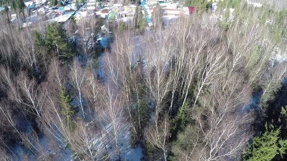 Aerial winter view of houses in village near the forest