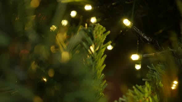 Thumbnail for Shallow DOF Christmas warm color light blinks  4K 2160p UHD footage - Sparkling of fairy lights on