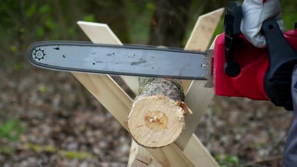 Thumbnail for Close Up of Woodcutter Sawing Tree Trunk on Sawhorse, Sawdust Fly To Sides
