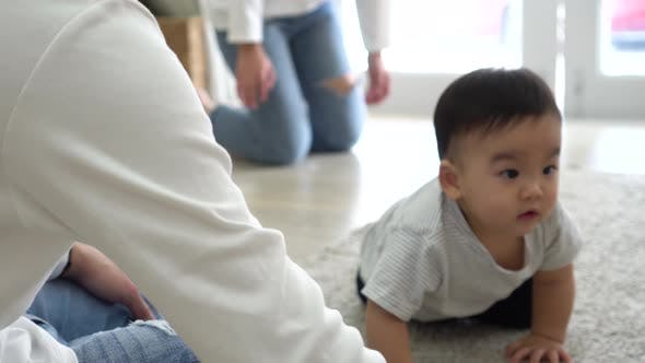 Baby Boy Crawling to Parents
