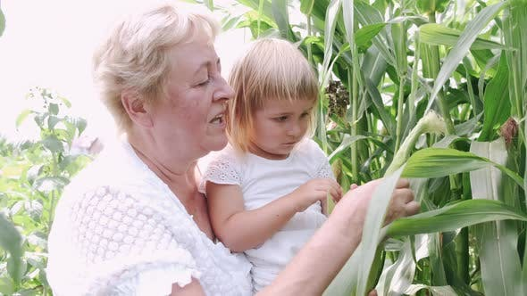 Thumbnail for Lovely Grandmother with Cute Granddaughter Outdoor
