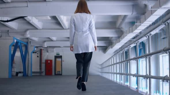 Thumbnail for Back View Doctor Walking in Hospital