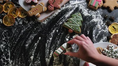 Christmas Gingerbread Cookies Collection Festive