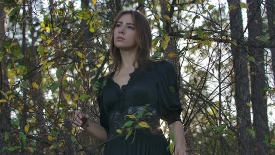 Thumbnail for Graceful Brunette Caucasian Girl with Brown Eyes Standing in the Forest in the Evening and Looking