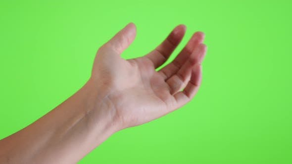 Thumbnail for Parfum spray applying on the hand in front of green screen 4K 3840X2160 UltraHD footage - Parfum bot