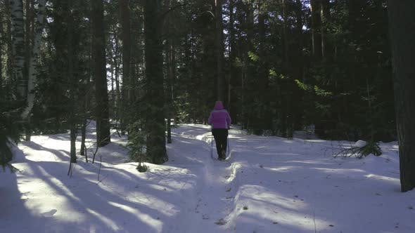 Thumbnail for Woman Walking in Winter Forest
