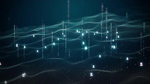 Digital Wave Data Information