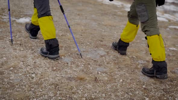 Thumbnail for Back View of a Hikers' Legs While They Are Going Uphill, Helping Themselves with a Ski Poles