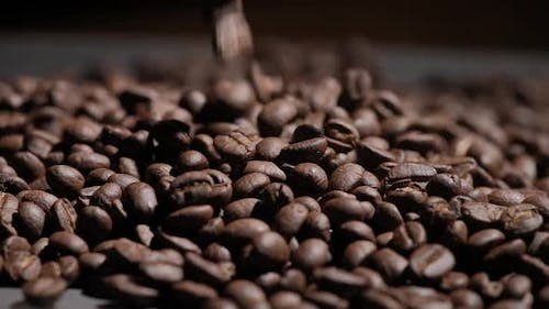 Freshly roasted coffee beans or coffee grains fall on a wooden table on a brown background at cafe.