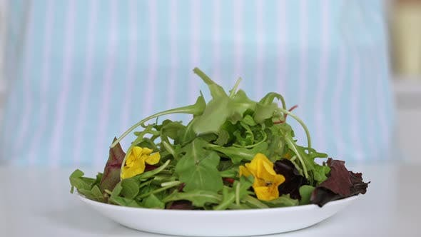 Close Up Lettuce Leaves