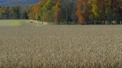 Medium shot of field in Hudson valley
