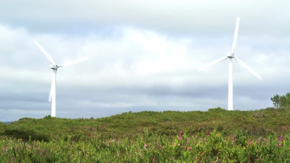 Thumbnail for Ecology Power, Wind Plant