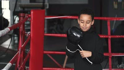 Little Boy Training Boxing on Boxing Ring