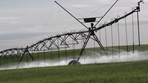 North Dakota Northern Great Plains in Summer Water Field Irrigation with Sprinkler Center Pivot