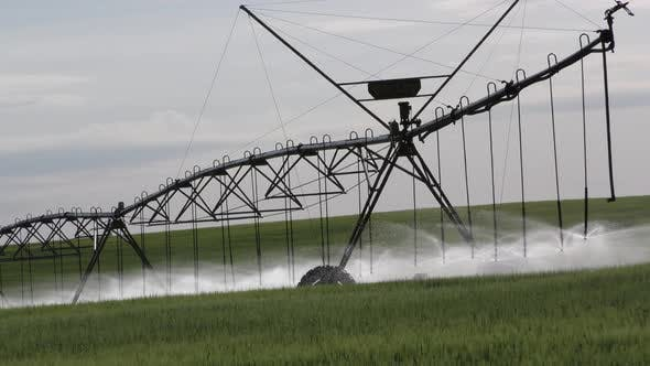 Thumbnail for North Dakota Northern Great Plains in Summer Water Field Irrigation with Sprinkler Center Pivot