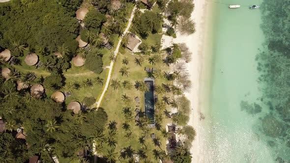 Thumbnail for Swiming At Tropical Beach