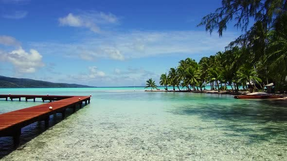Thumbnail for Wooden Pier on Tropical Beach in French Polynesia