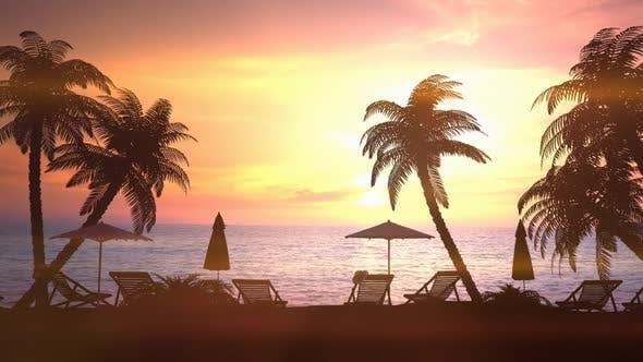 Resort Area During Bright Sunset 4K