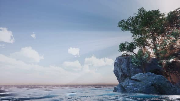 Thumbnail for Rocky Island with Trees As Ocean