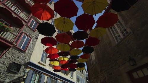 Die Regenschirmallee