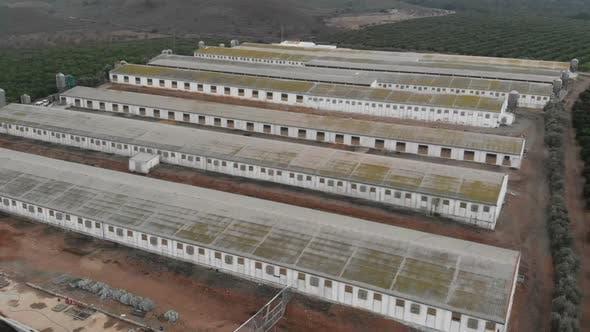 Aerial views of pig farm