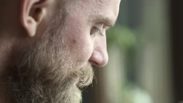 Thumbnail for Profile of Bearded Man with Light Green Eyes in Closeup with Blurred Background