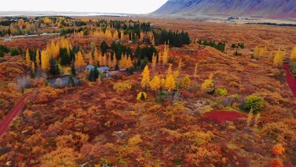 Colorful Autumn Landscape in National Park Thingvellir, Iceland