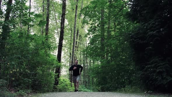 Thumbnail for Fitness Broll Man Jogging Nature Forest Trail
