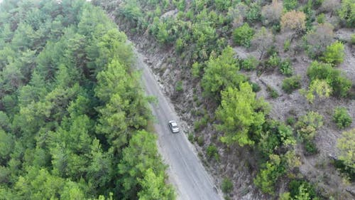 Aerial view flying over road with car moving, that through lane green forest. Car driving along