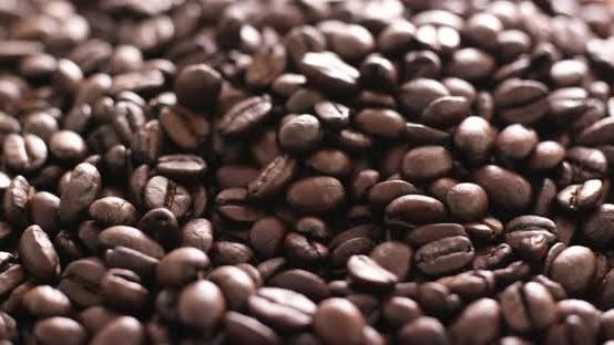 Thumbnail for Coffee bean