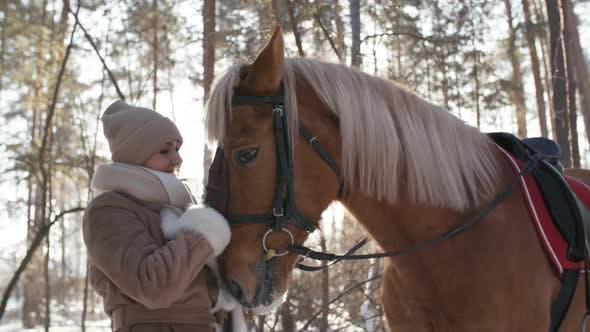 Cover Image for Joyous Woman Caressing Horse in Park on Winter Day