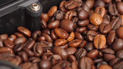 Coffee Beans Shaking in Coffee Machine While Grinding