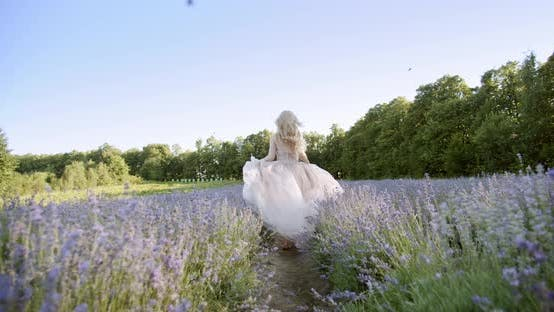 Thumbnail for Cinematic View of Woman Run Colorful Lavender Fields on a Sunny Day Blooming Purple Flowers.