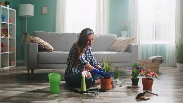 Young Woman Is Planting Houseplant