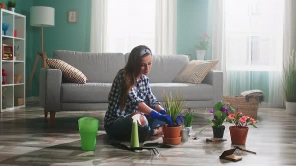 Junge Frau pflanzt Zimmerpflanze