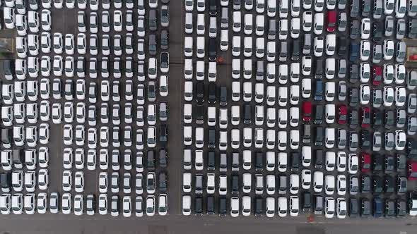 Thumbnail for Many Cars on Parking Lot