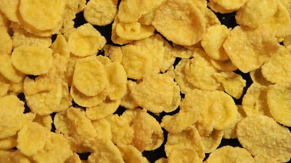 Thumbnail for Sweet Corn Flakes is circling on the black background