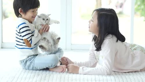 Nette asiatische Kinder spielen und halten Kätzchen